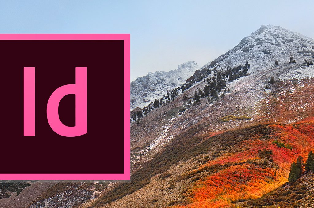 Kein Cursor in InDesign mit macOS High Sierra (10.13)