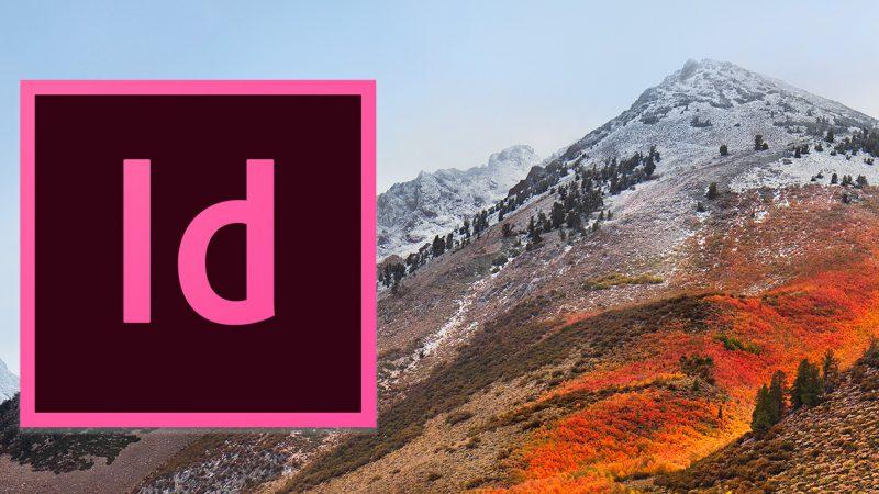 Kein Cursor in InDesign mit macOS High Sierra (10.13)